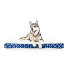 Soft Durable Memory Foam Wasserdichtes Memory Foam Hundebett